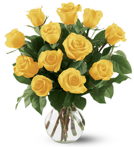 dozen-yellow-roses
