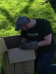 andrewheadin box